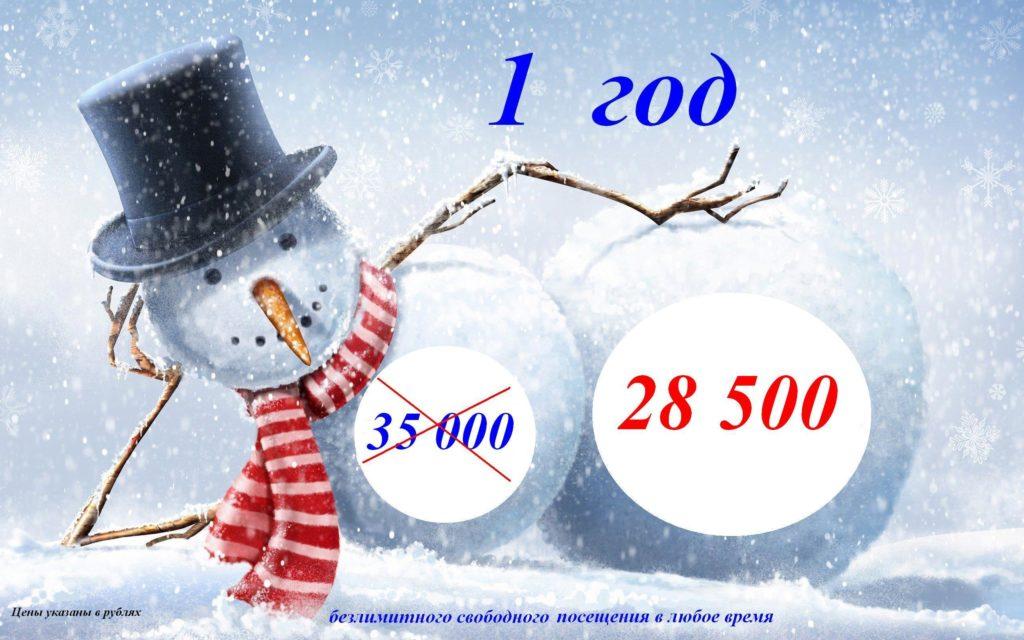 12 месяцев за 28 500 руб. - Центр КИР